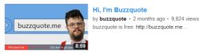 buzzquote ads